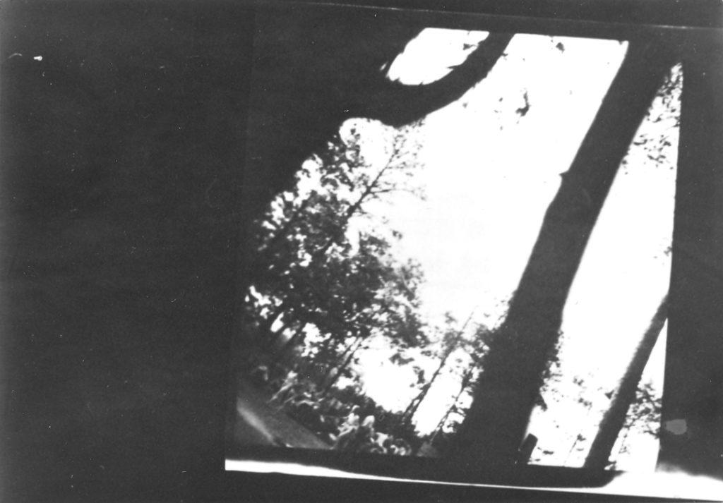 Femmes poussées vers la chambre à gaz du crématoire V de Birkenau